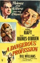 A Dangerous Profession 1949 DVD - George Raft / Ella Raines